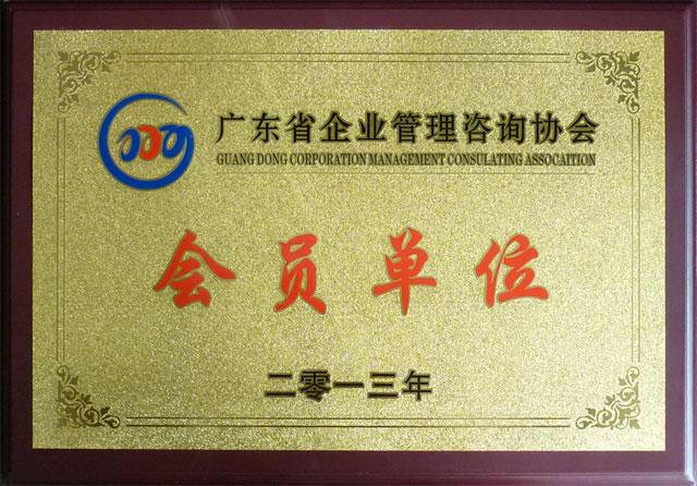 广东省企业管理咨询协会会员单位